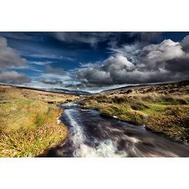Sally Gap River​