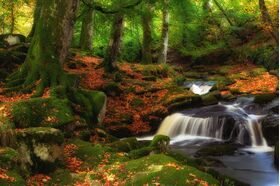 Cloghleagh Waterfalls
